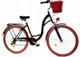 rower-damski-miejski-dallas-28-biegi-damka-lux